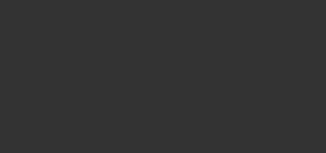 hochzeitslicht Logo